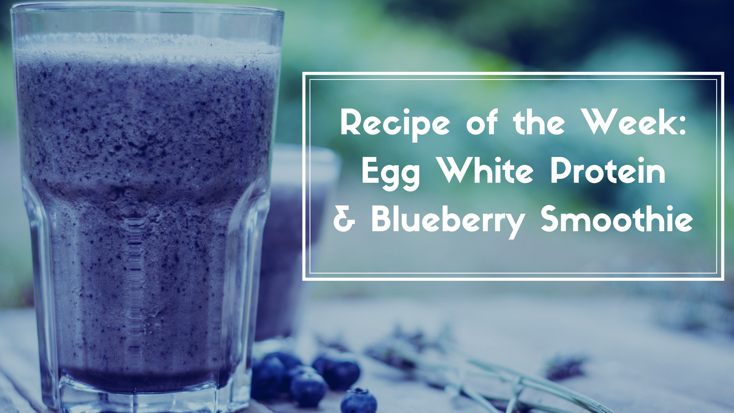 Egg White Smoothie Website